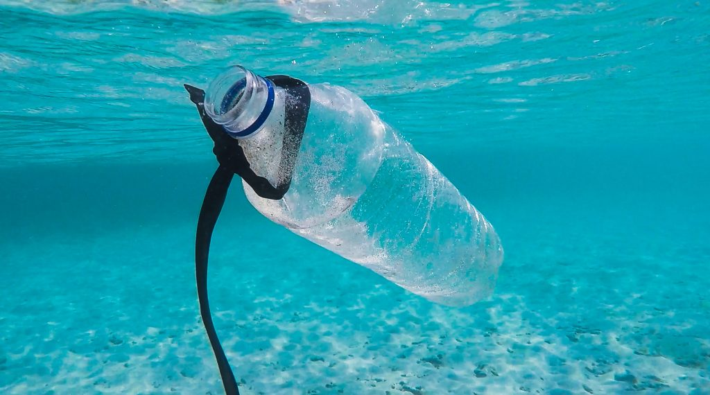 bottle floating in water pollution
