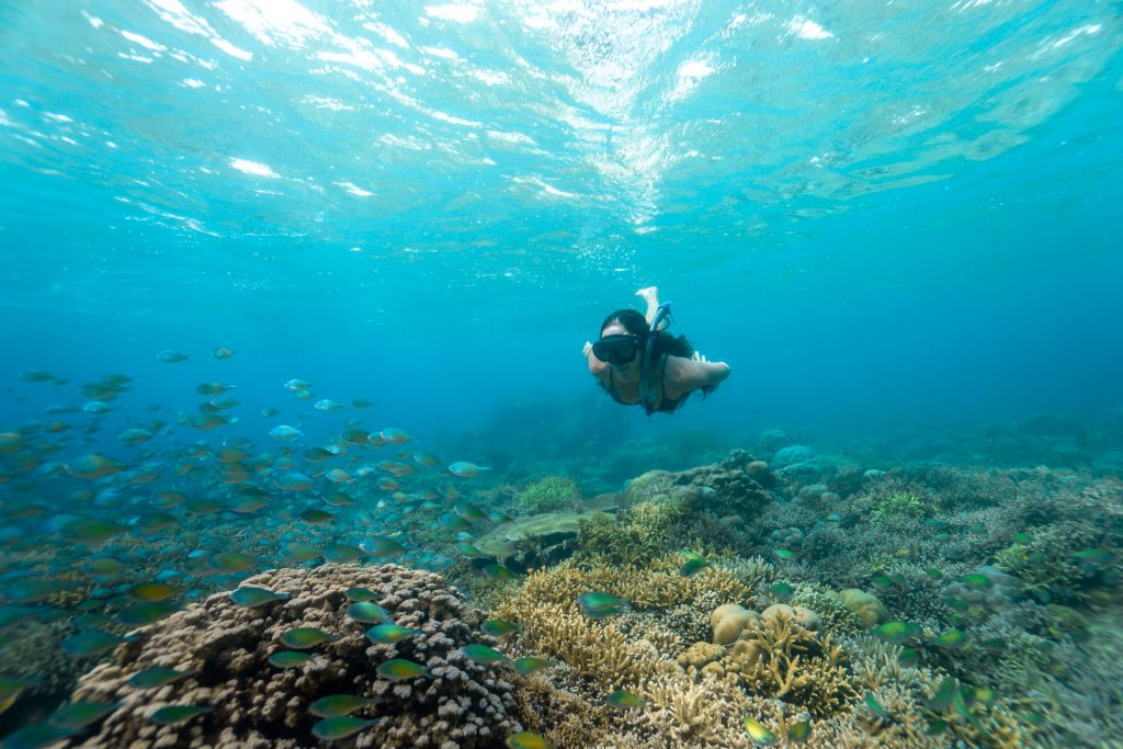 Lombok snorkelling tour