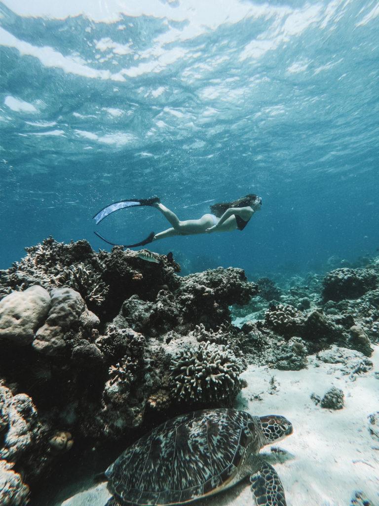 snorkelling-gili-air