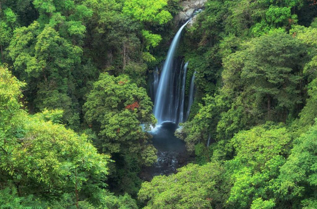 waterfalls Senaru