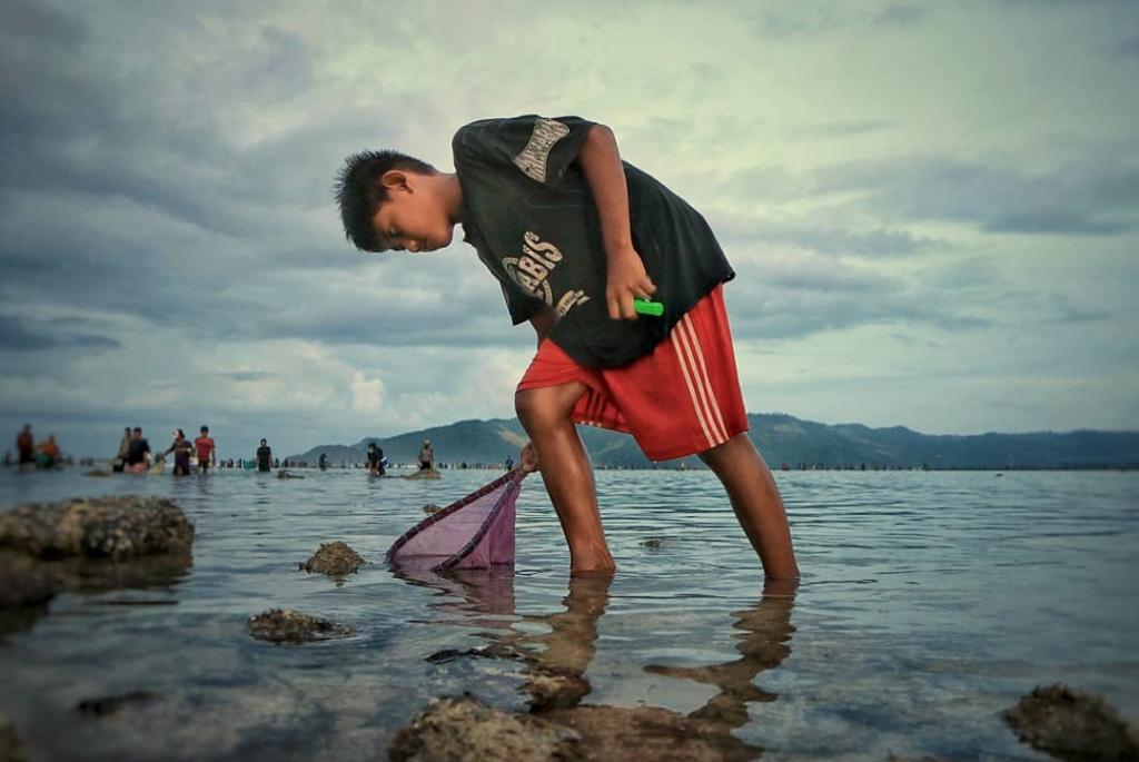 Bau Nyale Kuta Lombok